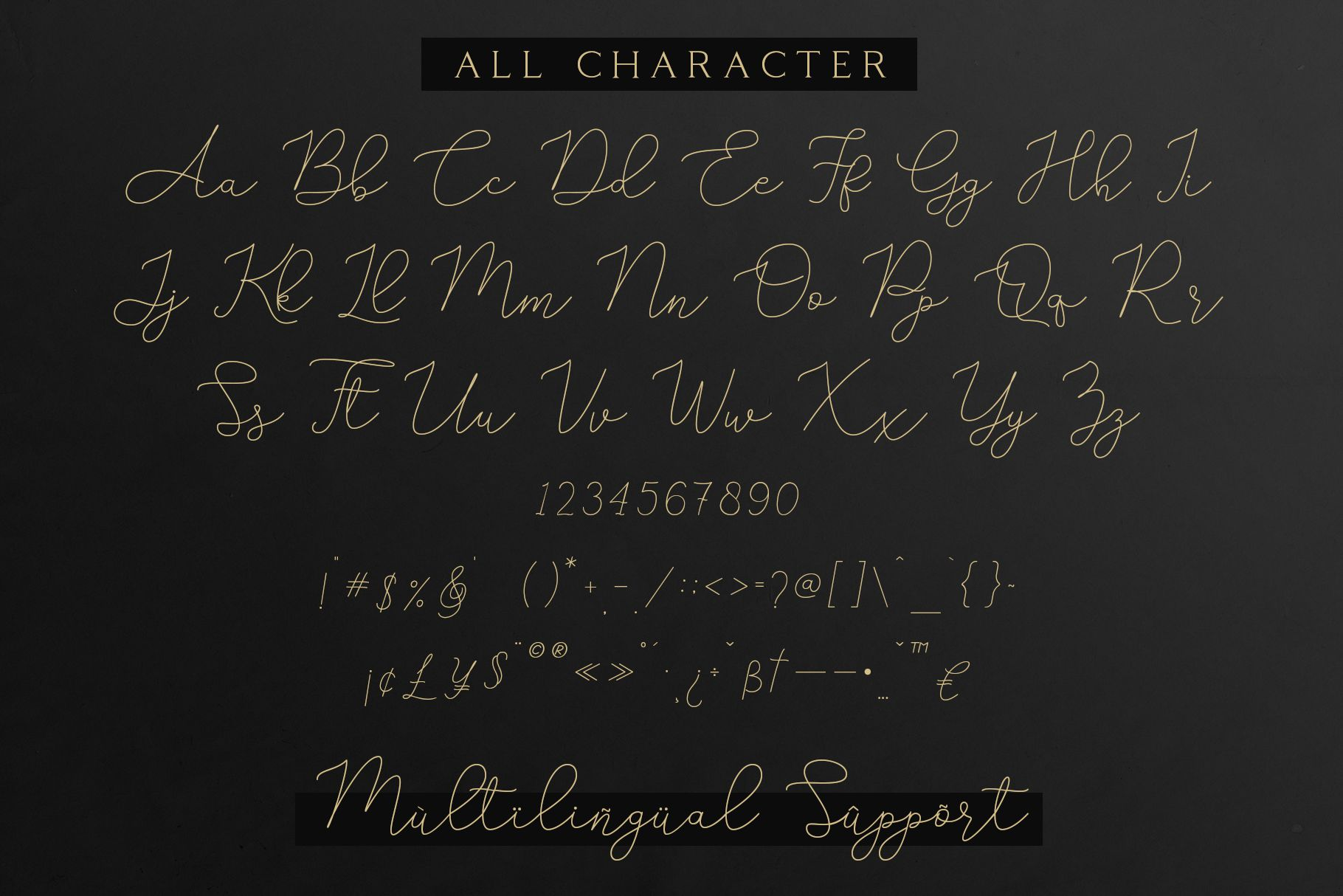 Adelya - Elegant Signature Font example image 9