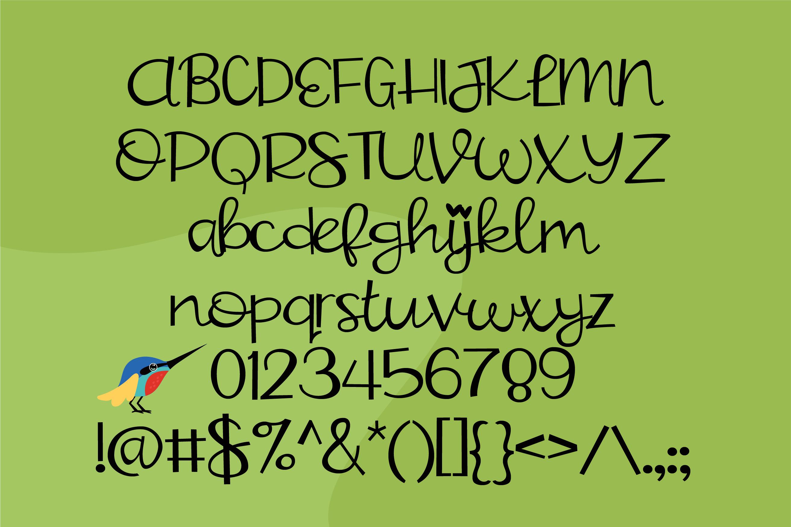 ZP Hummingbird example image 3