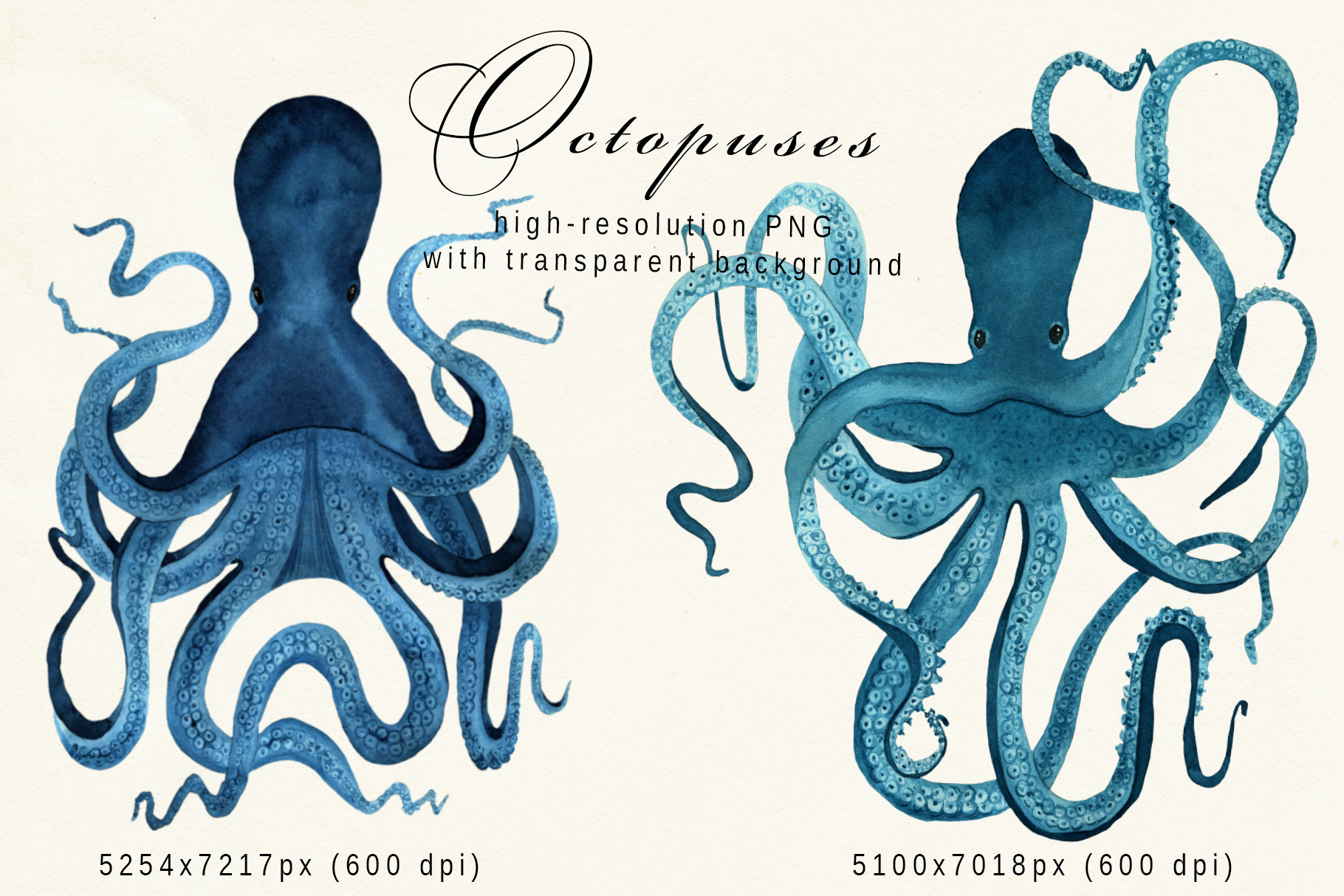 Underwater creatures - jellyfishes, octopuses, starfishes example image 11
