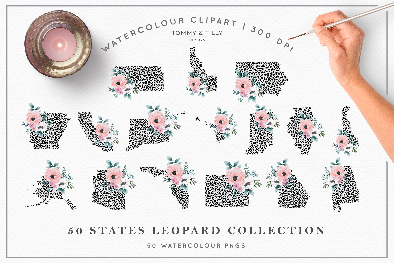 Leopard Print 50 States Bundle - Clipart PNG Sublimation example image 3