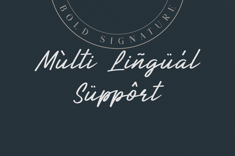 Callina // Bold Signature example image 5