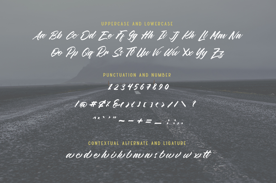 Wildlast Handbrush Typeface example image 3