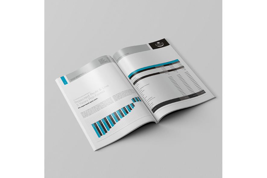 Business Financial Plan Template example image 5