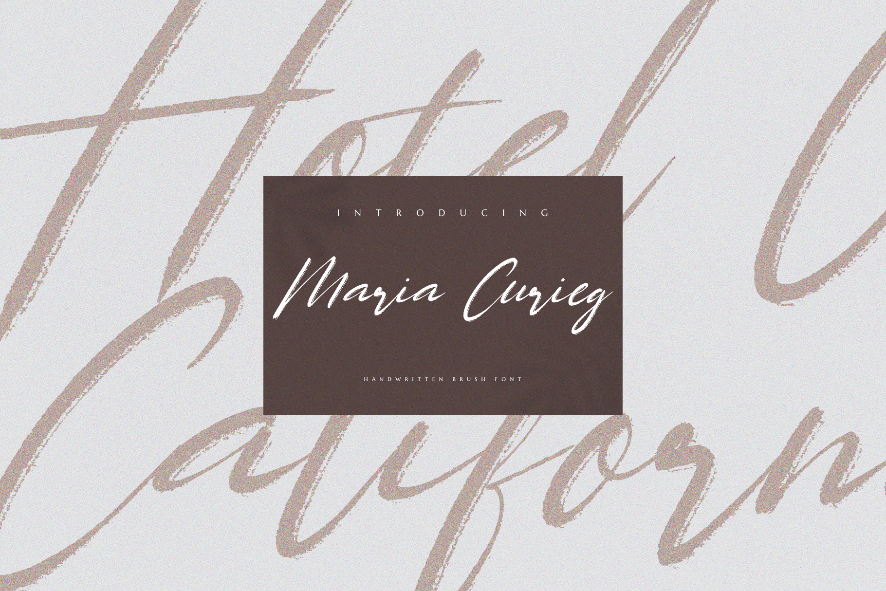 Maria Curieg Handwritten Brush Font example image 2