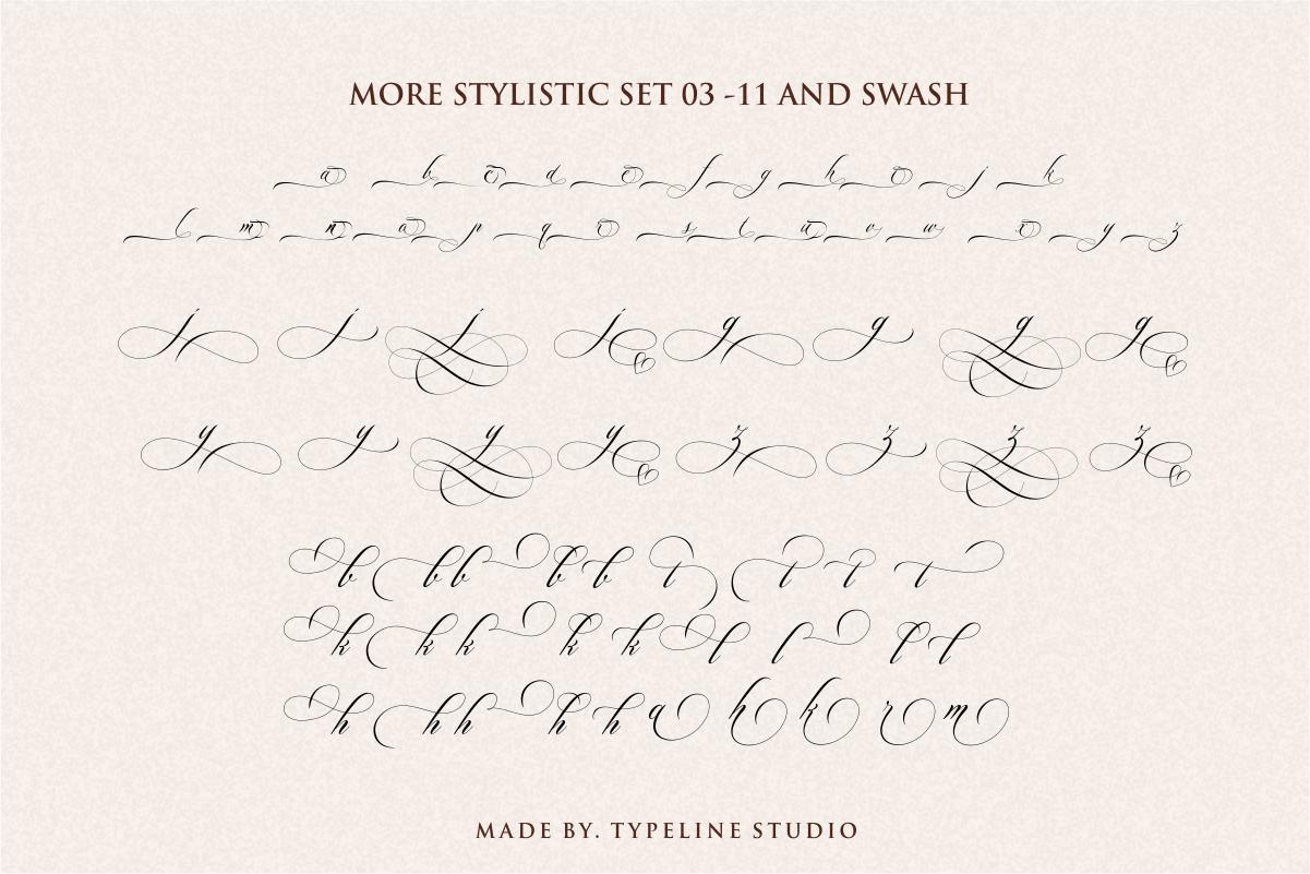Switzerland Elegant Stylish Calligraphy Script example image 11