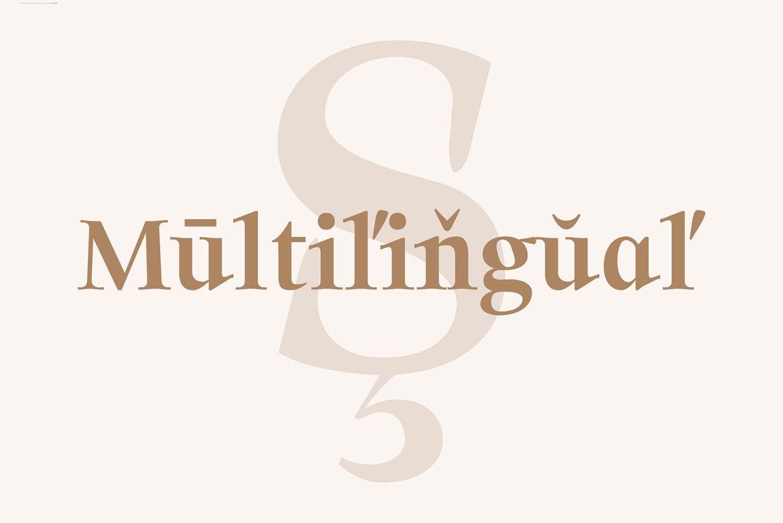 Solomon Serif Font Family example image 7