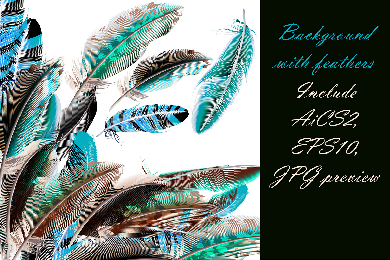 Colorful feather bundle. Vector illustrations and elements example image 4