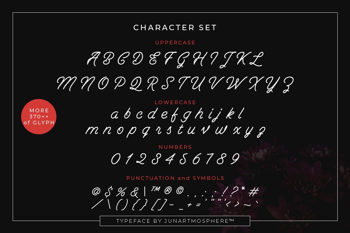 Berliana Monoline Font Extrass Logo example image 2