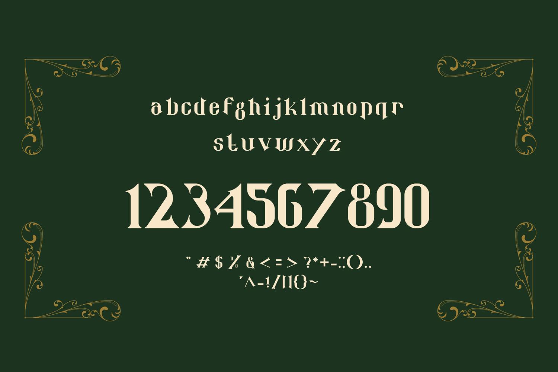 Qoro - Vintage Serif Font example image 6
