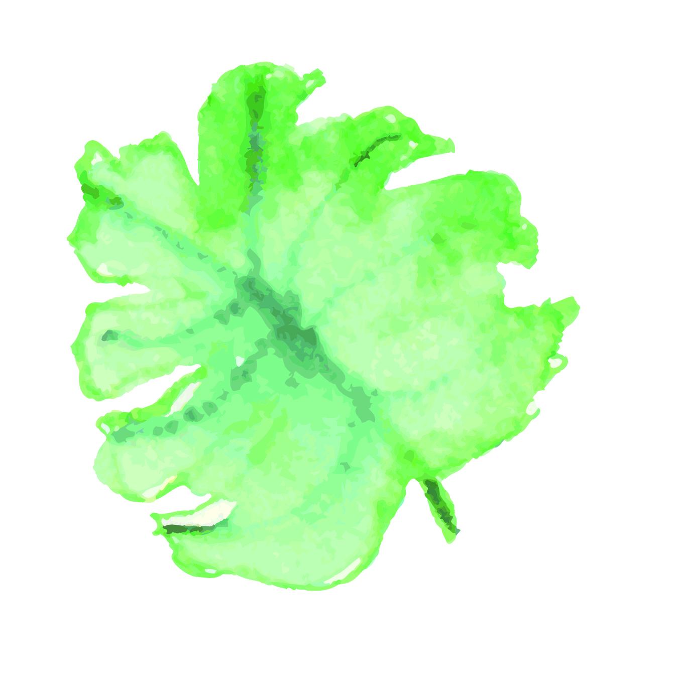 Tropicla Breeze clip art bundle example image 7