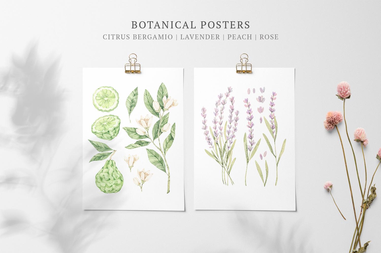 Organic LAB. Watercolor botanical illustrations example image 4