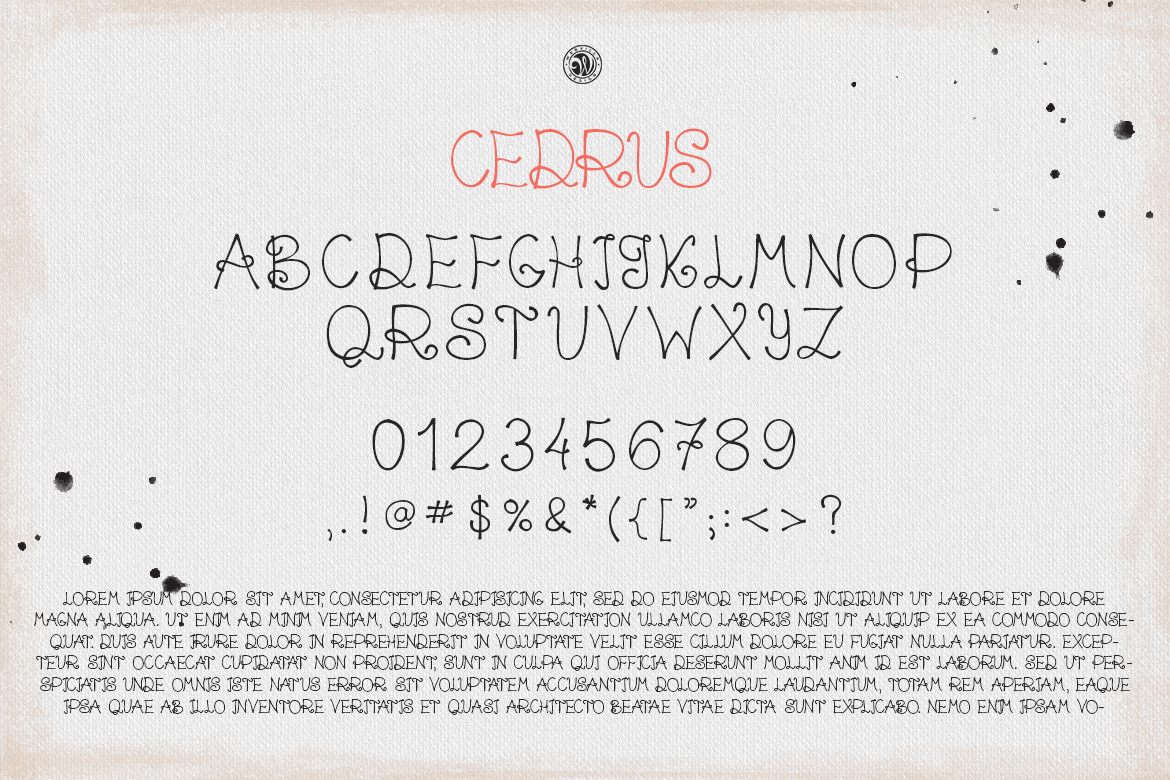 Cedrus Font example image 5