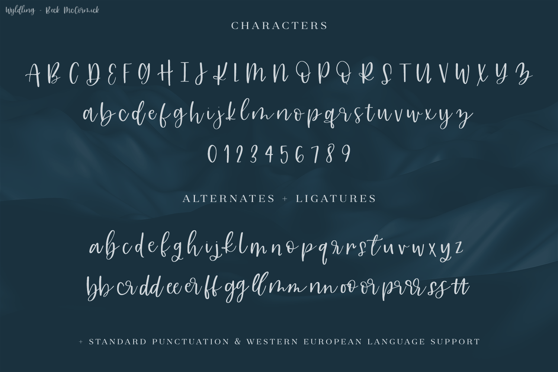 Wyldling Script Font example image 10