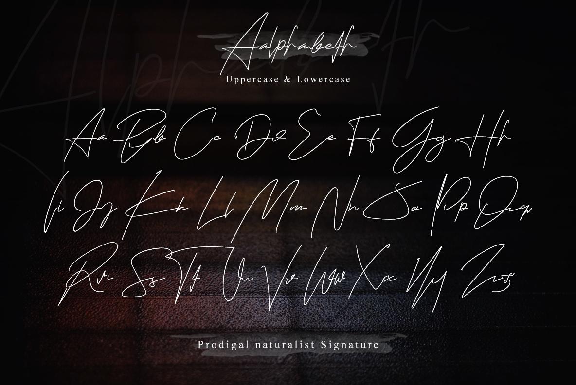 Prodigal Natural signature & Extra swash example image 17