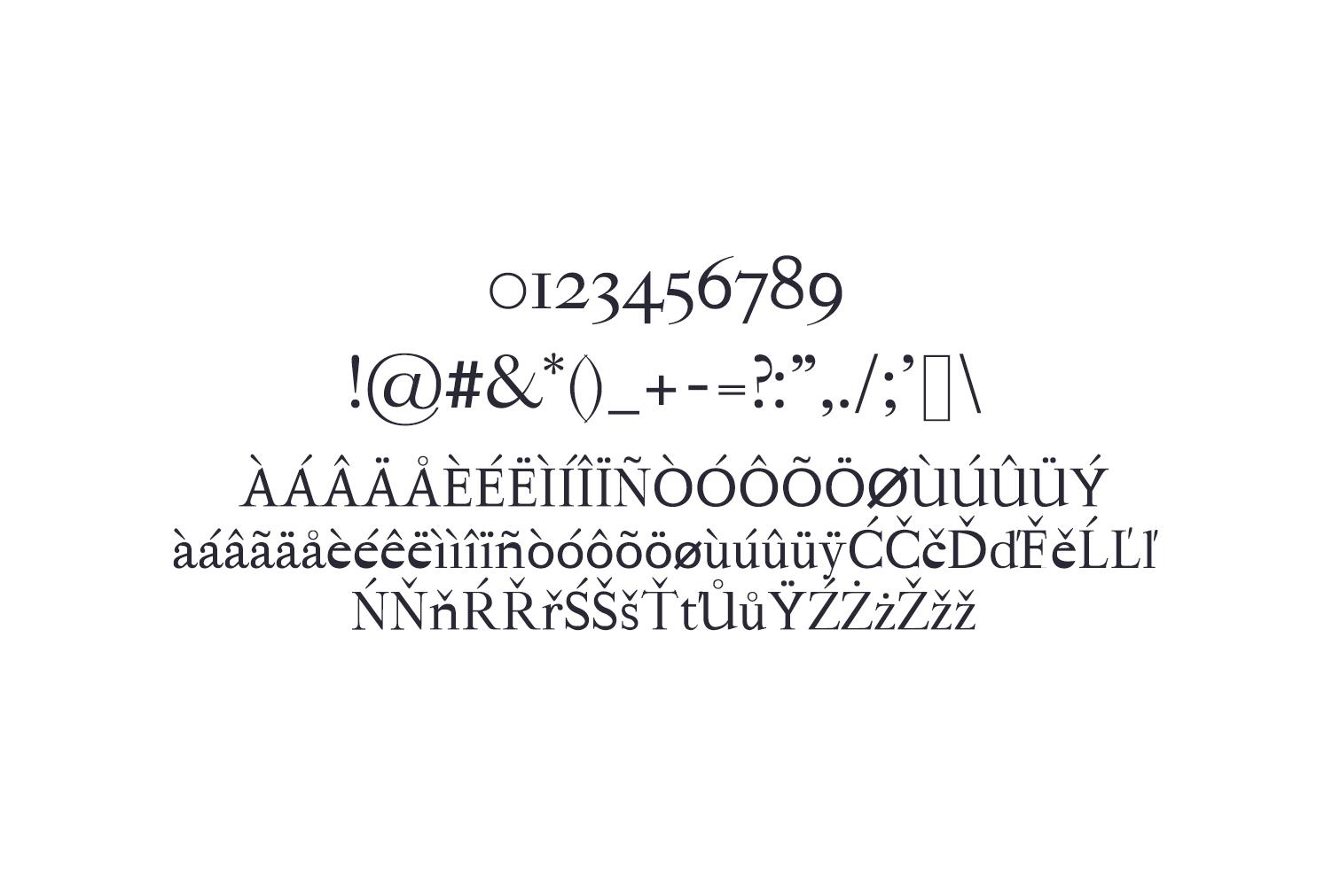 Hagito Serif Font Family example image 4