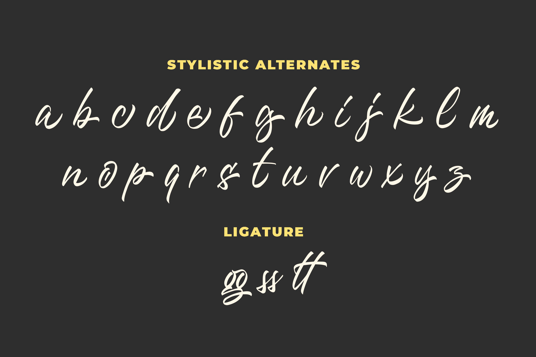 Questario - Stylish Script Font example image 7