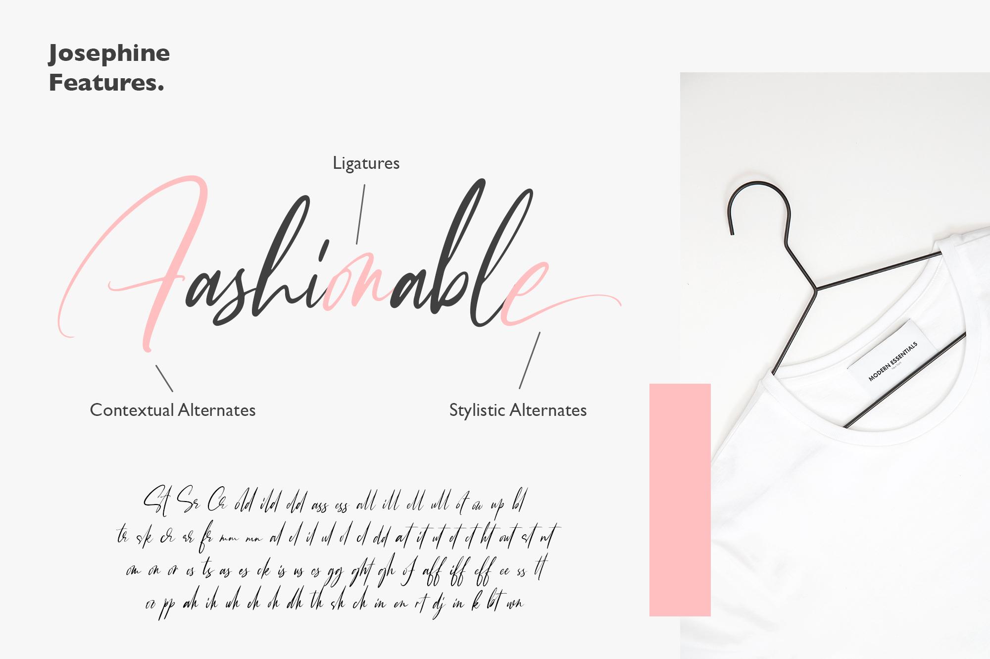 Josephine Fashionable Script Font example image 6