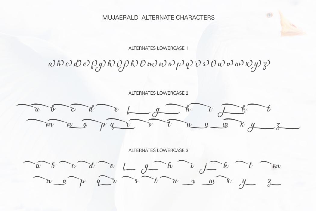 Mujaerald Font example image 11