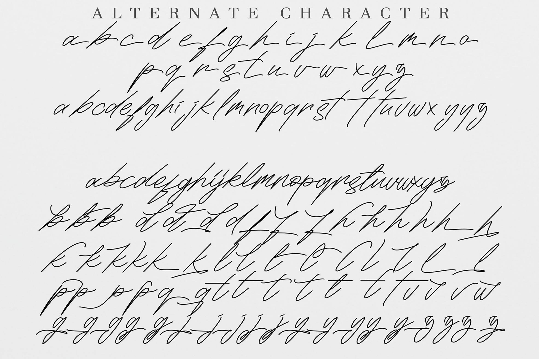 Maldins - Stylish Signature Font example image 11