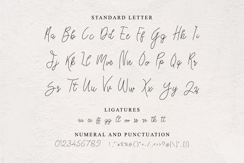 Bellievia Script Font example image 2
