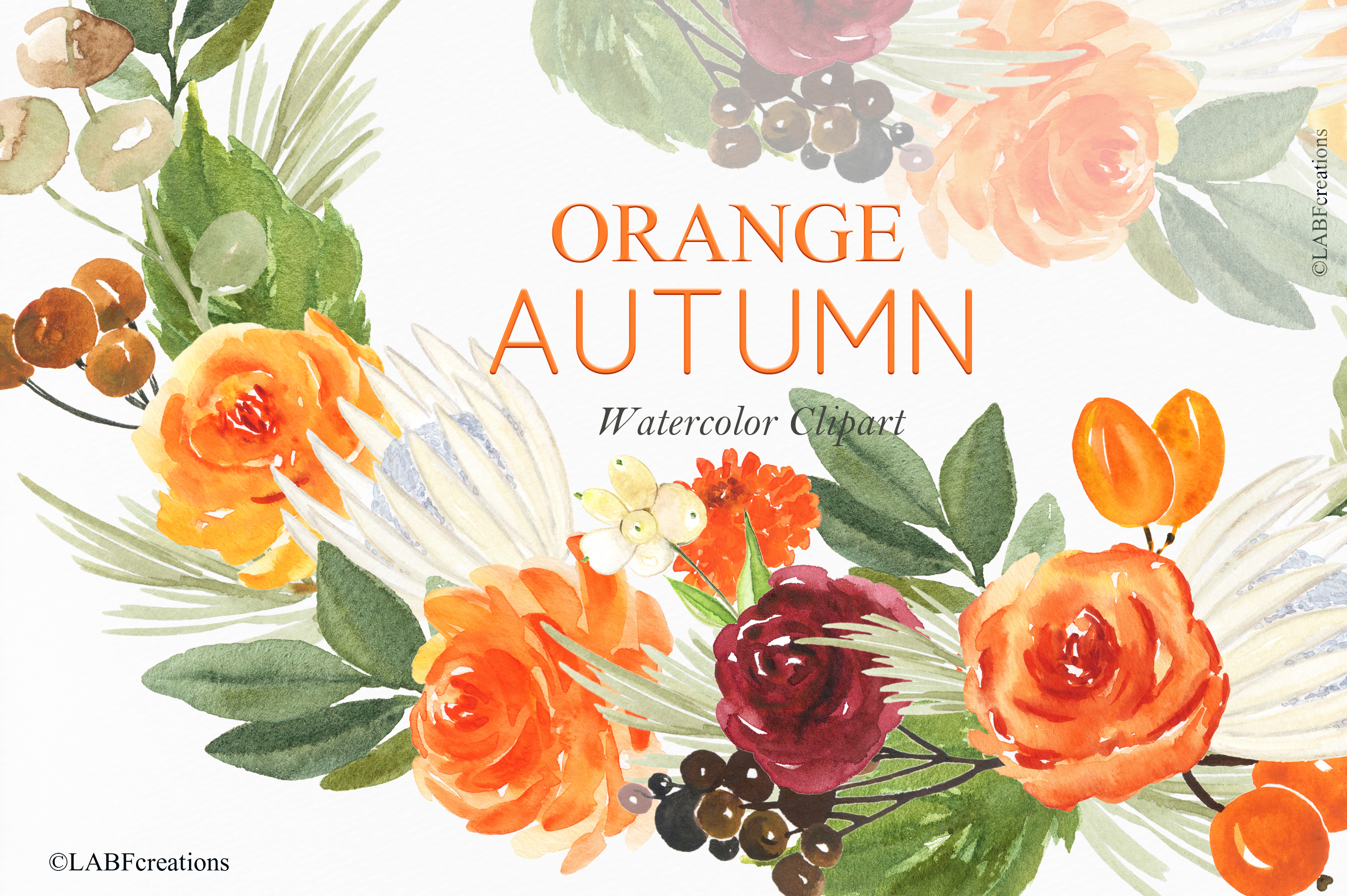 Orange, red and burgundy autumn flowers collection. example image 4