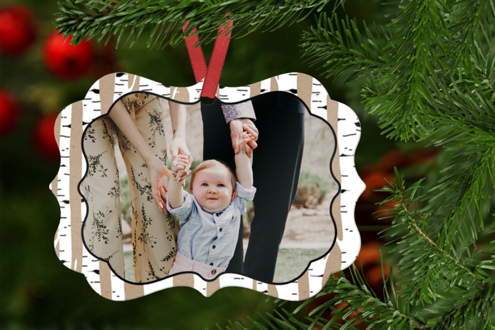Plaid and Birch Ornament Template example image 2
