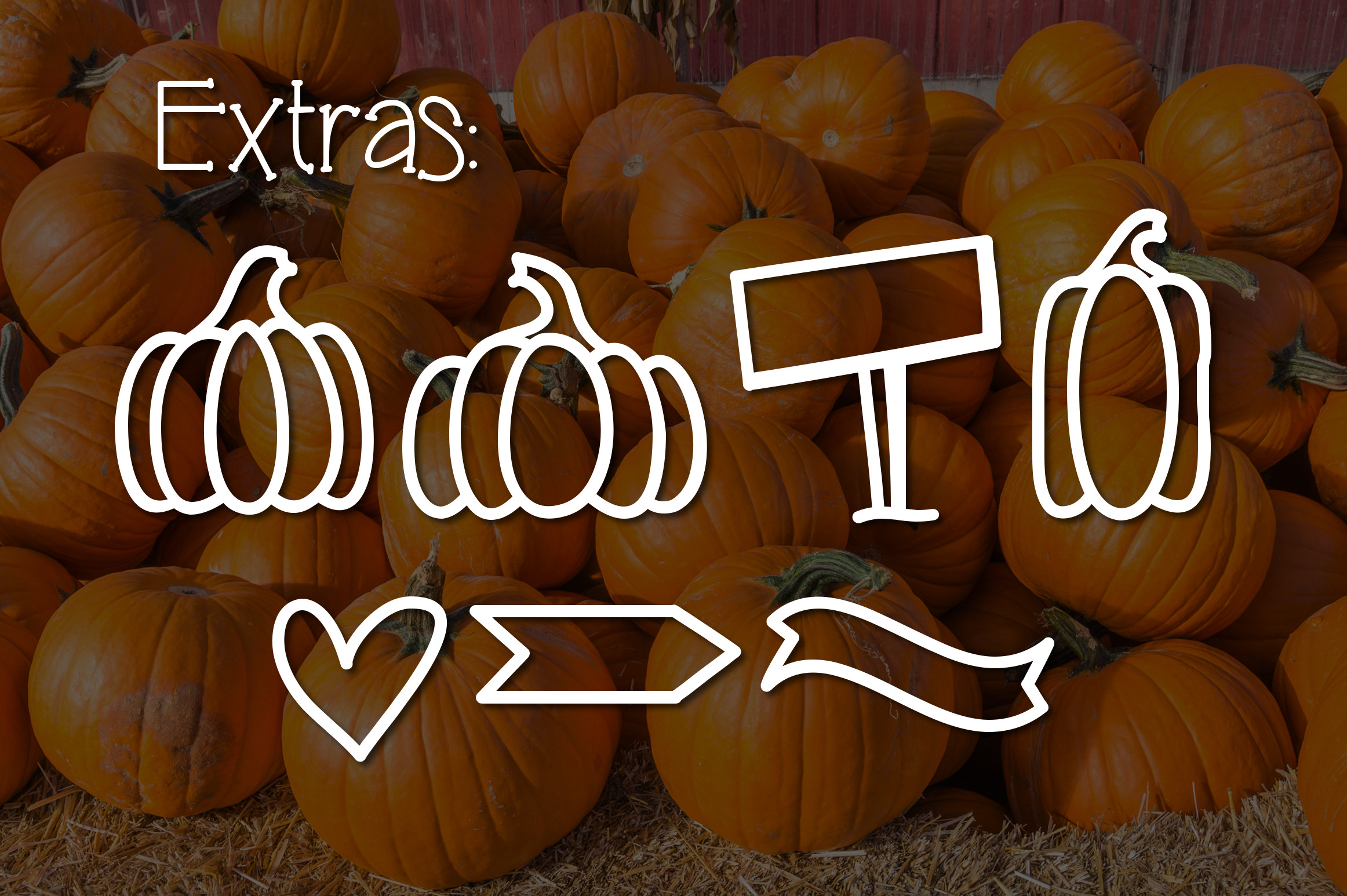 Pumpkin Patch a Fun Serif Font example image 3