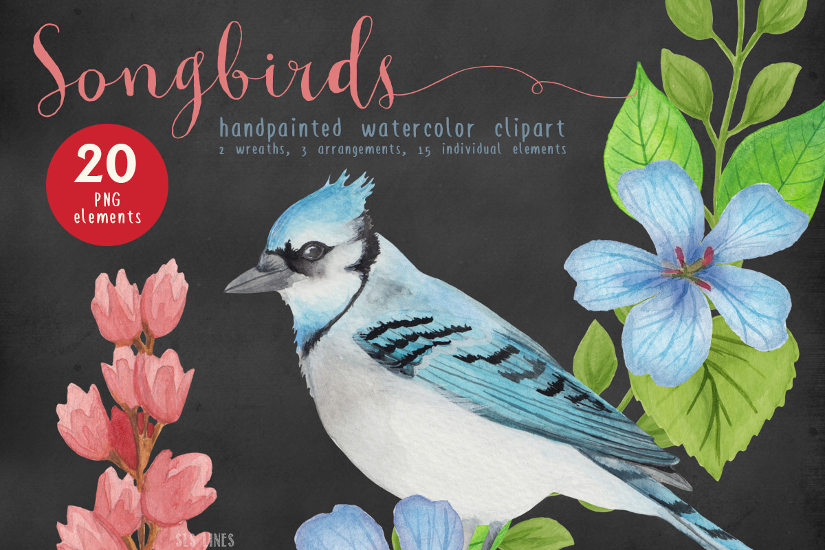 Song Birds Watercolor Clipart example image 4