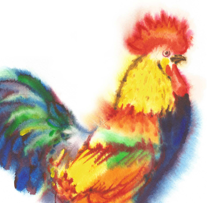 Watercolor Roosters example image 4