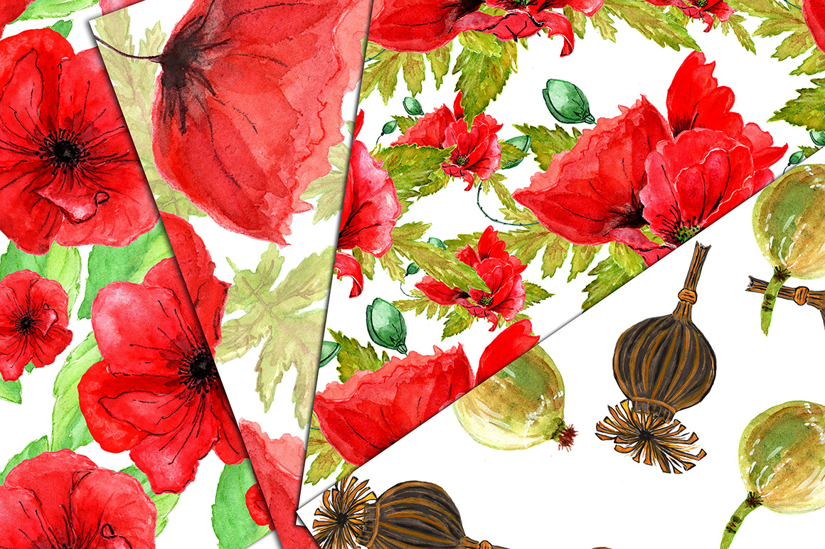 Watercolor flowers- Poppies clipart example image 3