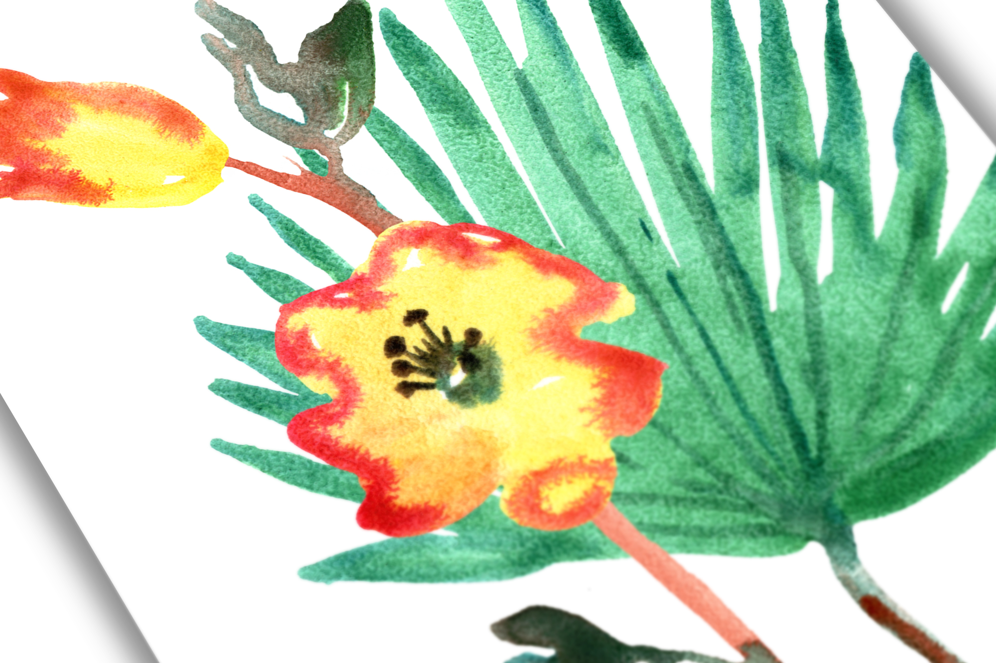 Tropical watercolor set example image 4