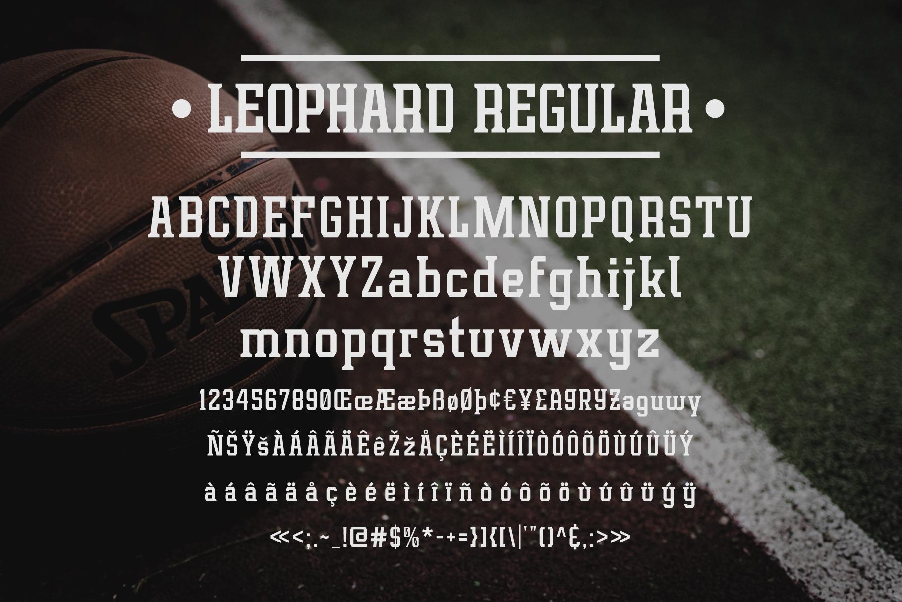 Leophard Font Family example image 9