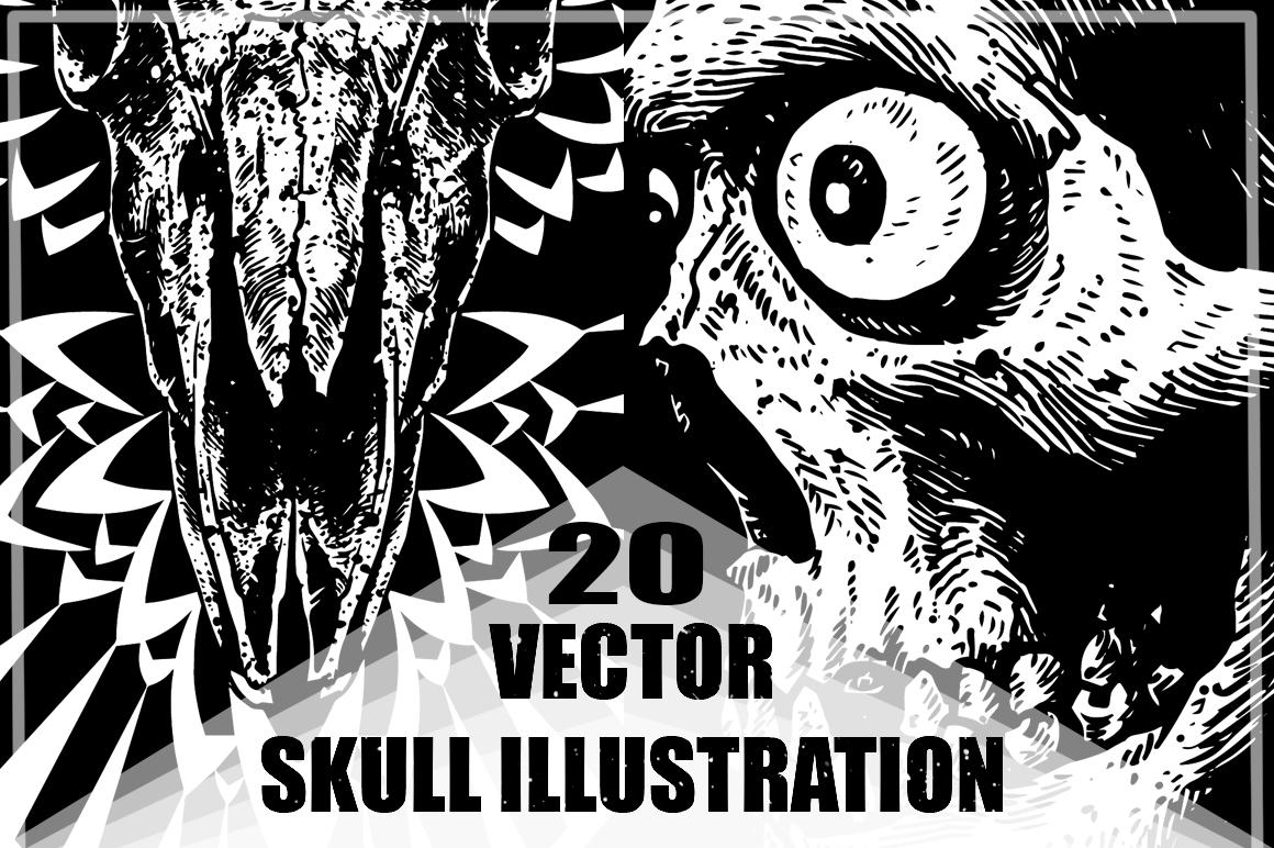 20 VECTOR skull illustration example image 1