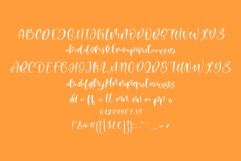 Mango Pie Script Font example image 7