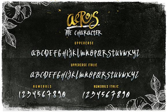 Aeros + Extra Font Roast example image 3