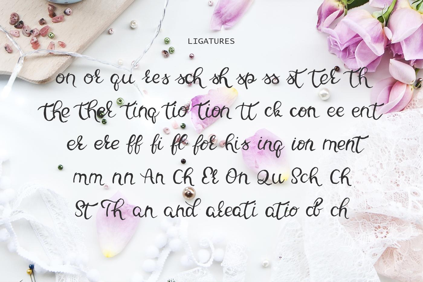 Clari Sage Font example image 3