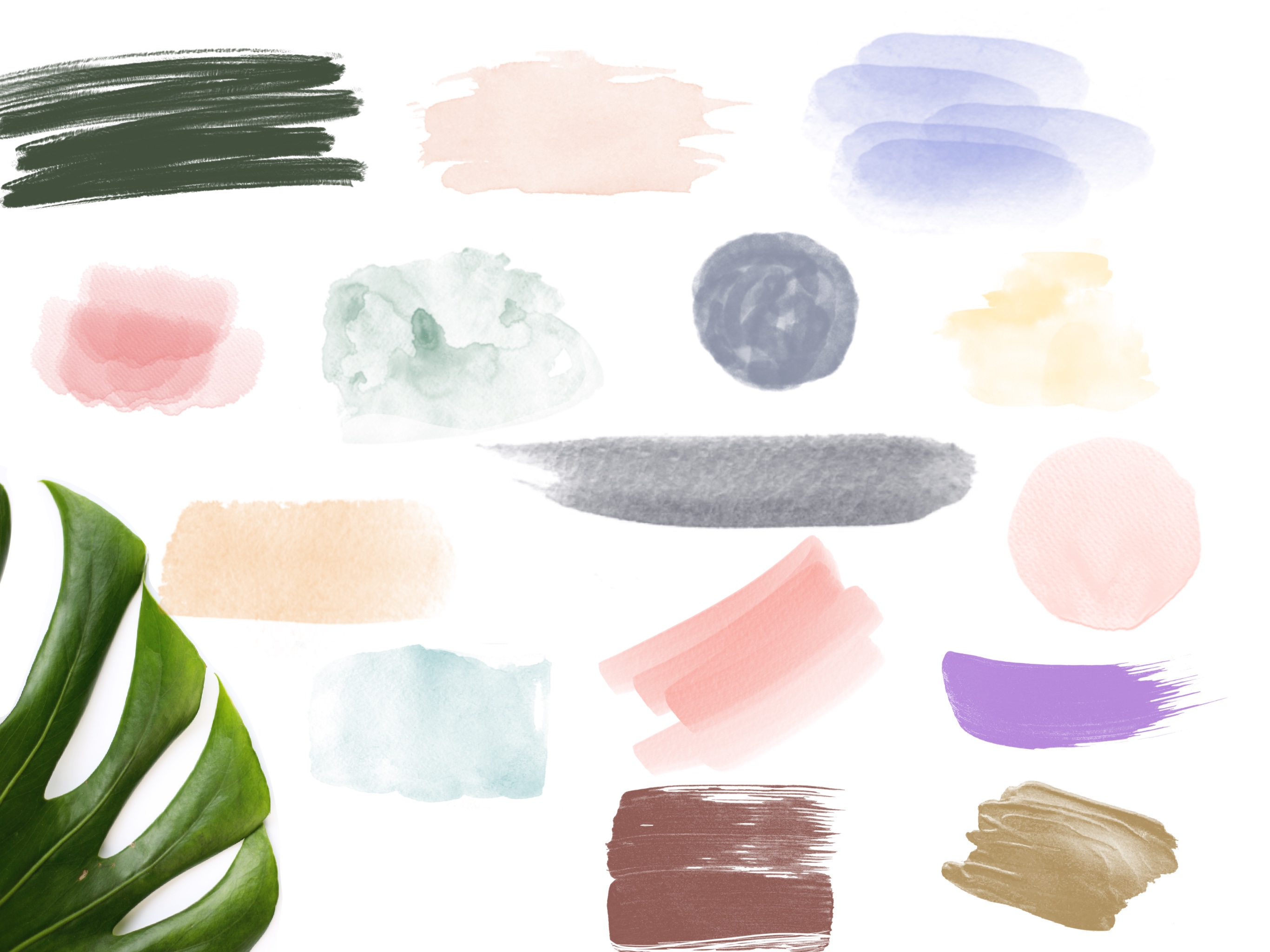 Botanica Watercolour Stamp Brushes for Procreate example image 7