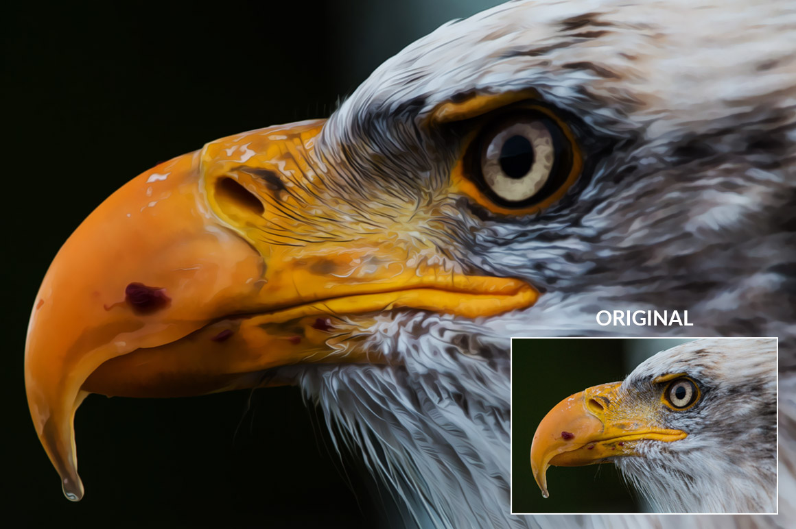 Oil Paint Photoshop Action example image 3