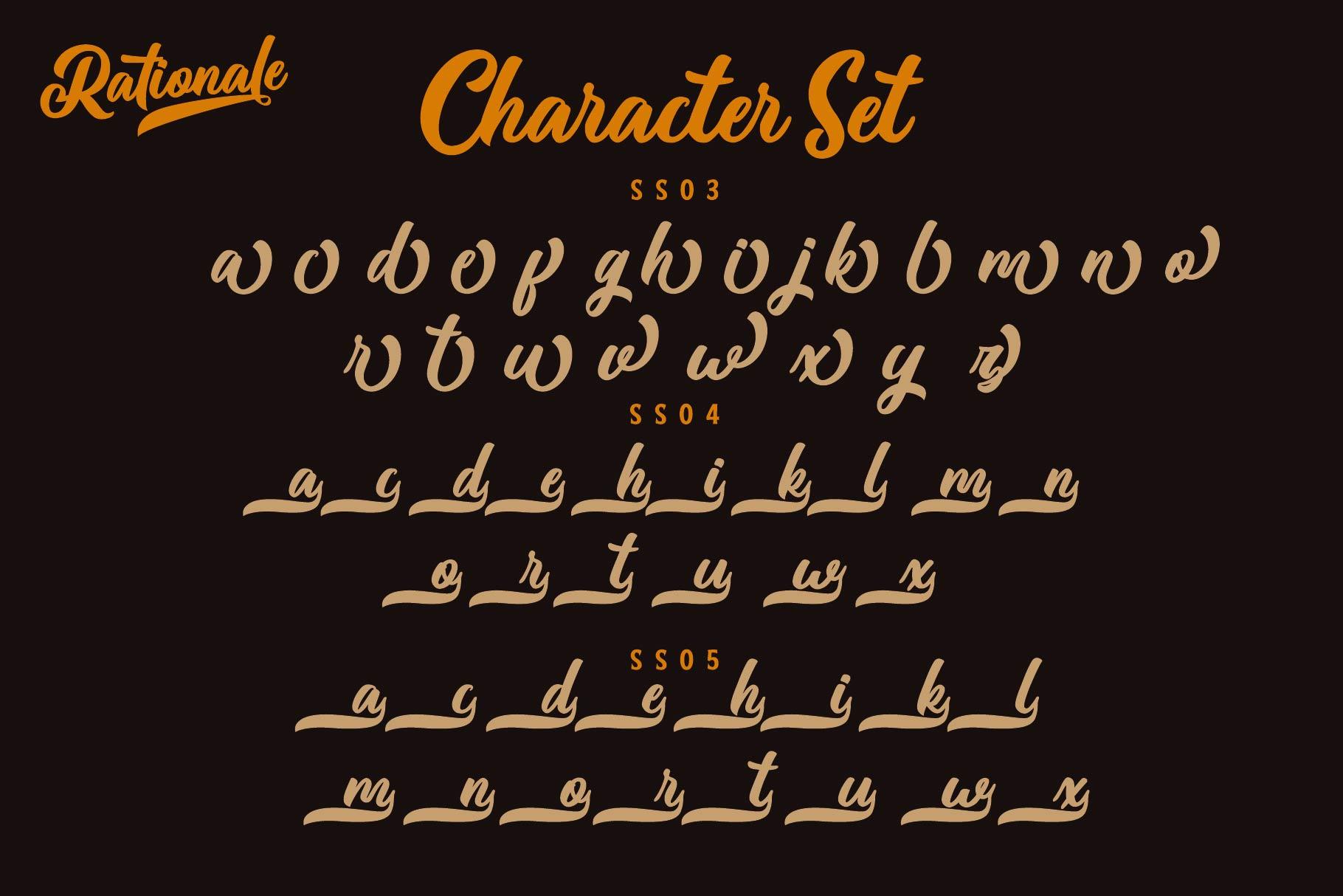 Rationale Vintage Script Font example image 8