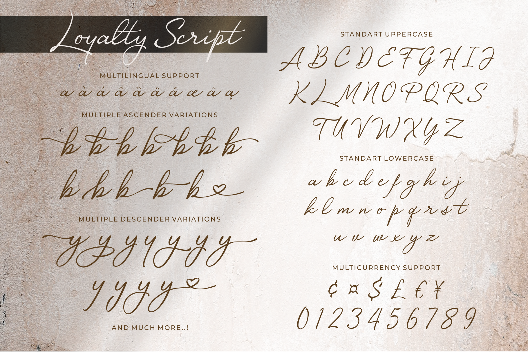 Luxury - Loyalty Script Fonts example image 6