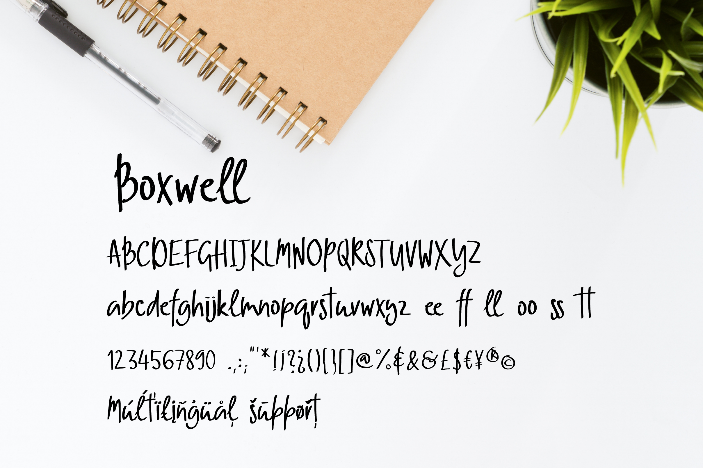 Boxwell example image 2