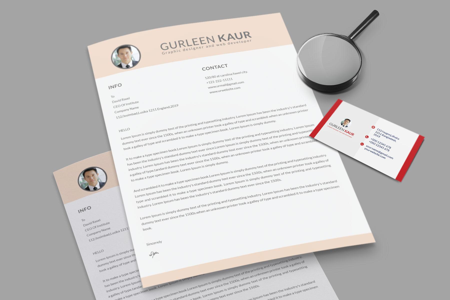 Professional Cv Resume Bonus business card Word/PSD,AI example image 12