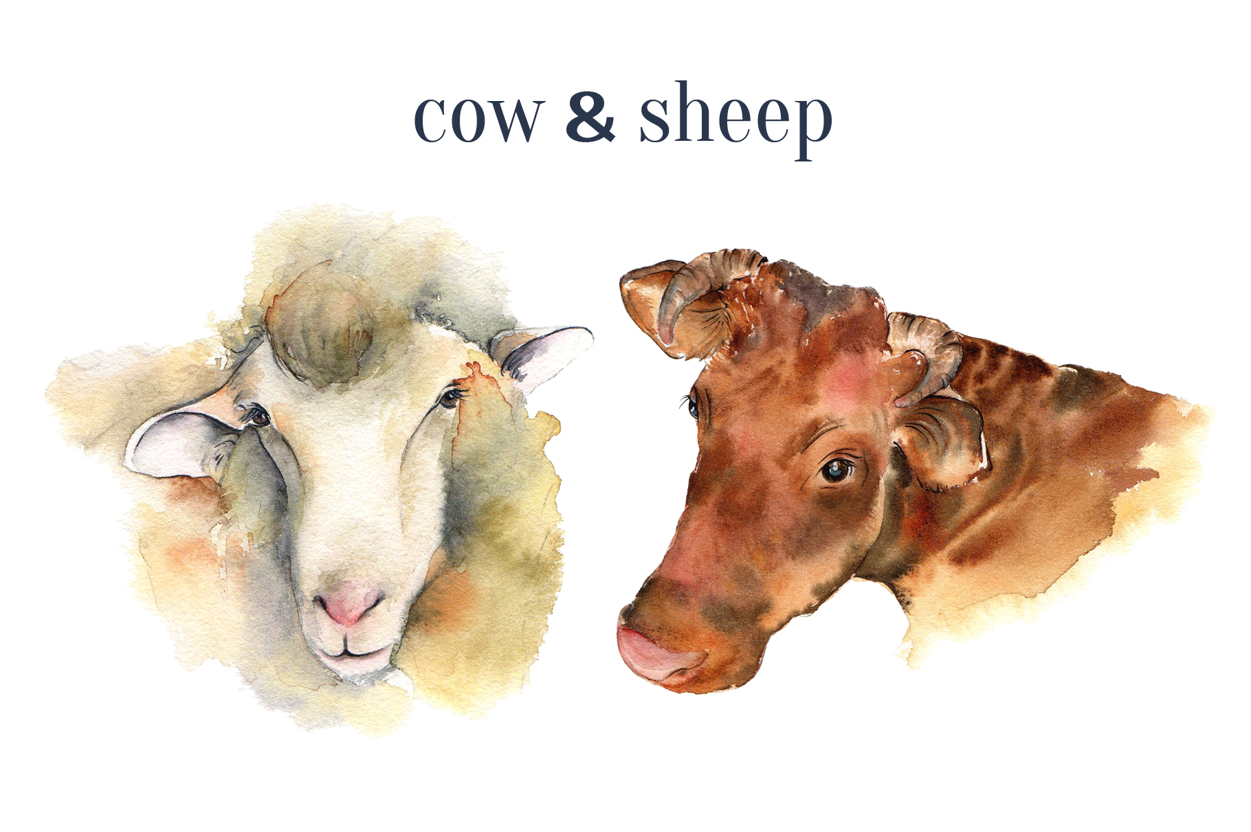 Farm animals watercolor collection example image 6