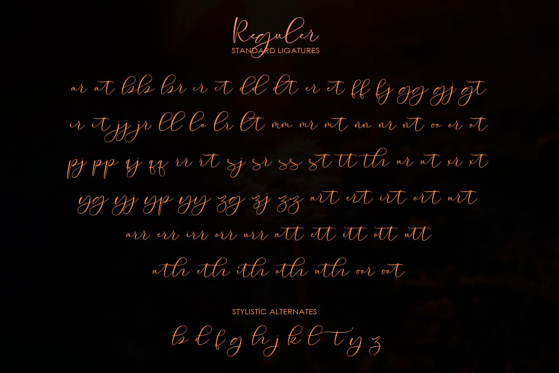 Roommates Script | Reguler & Slant example image 13