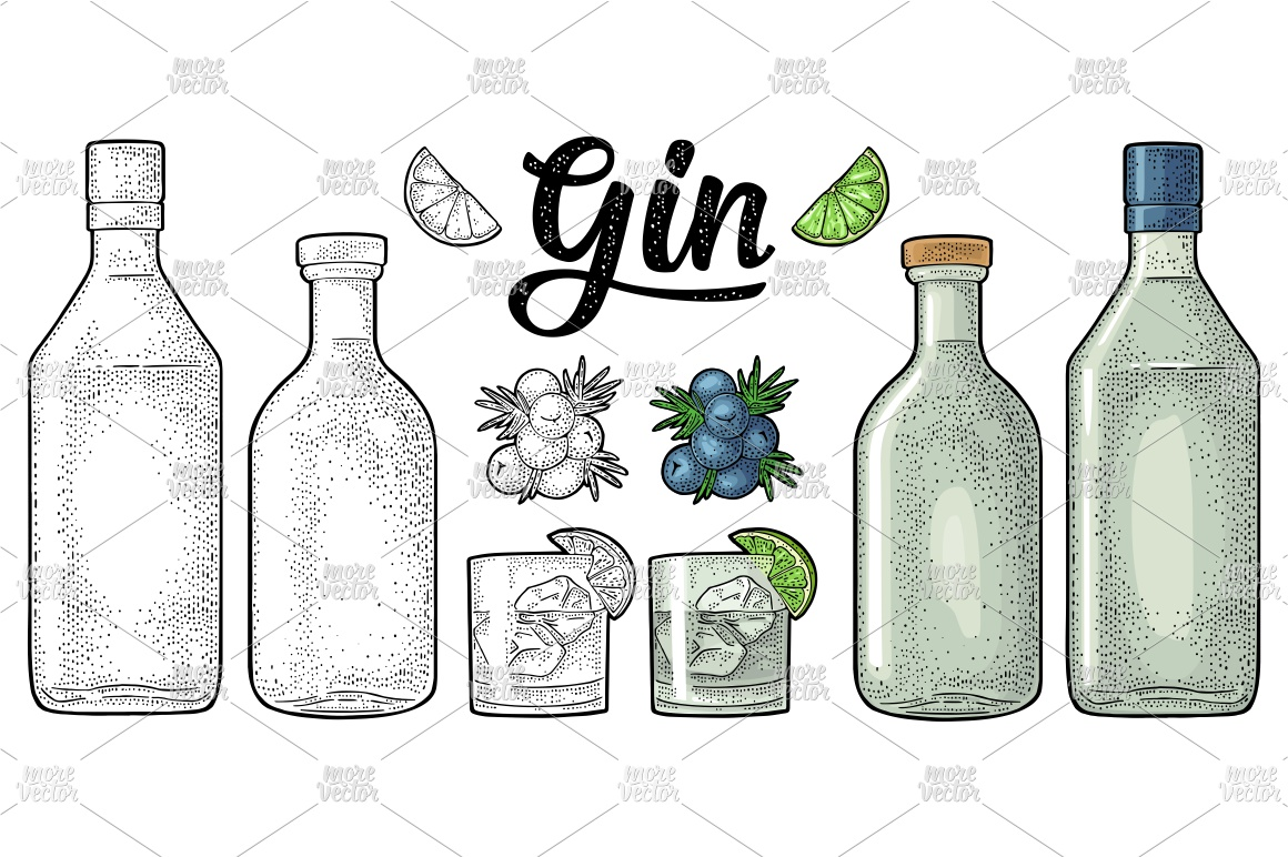Glass, bottle gin, branch juniper with berries engraving example image 2