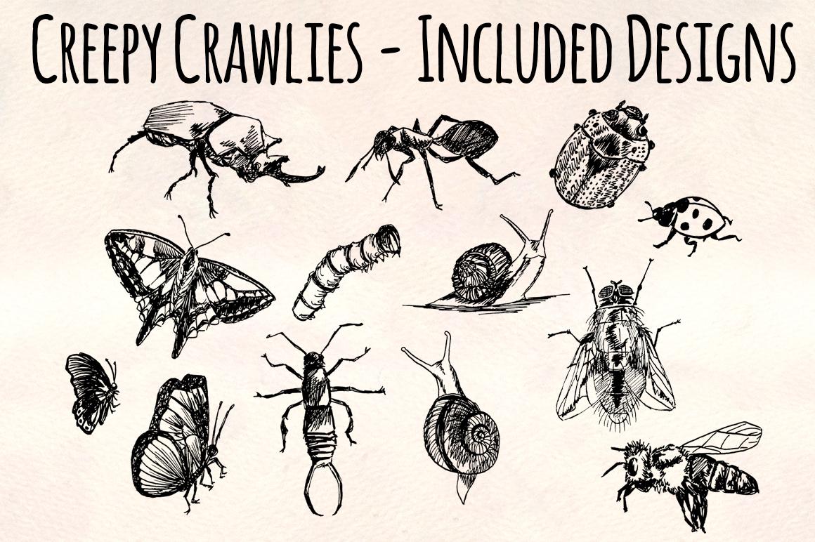 Creepy Crawly Bugs Vector Sketchbook Graphics example image 3