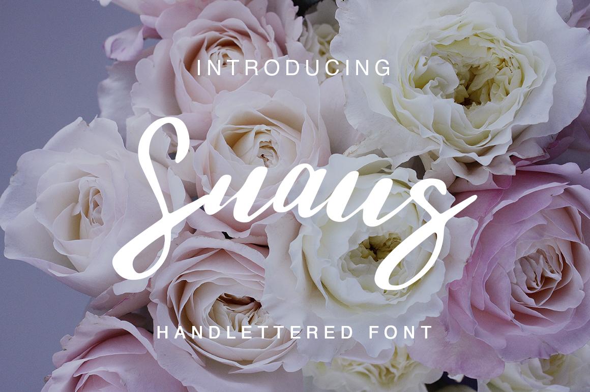 Snaus example image 1