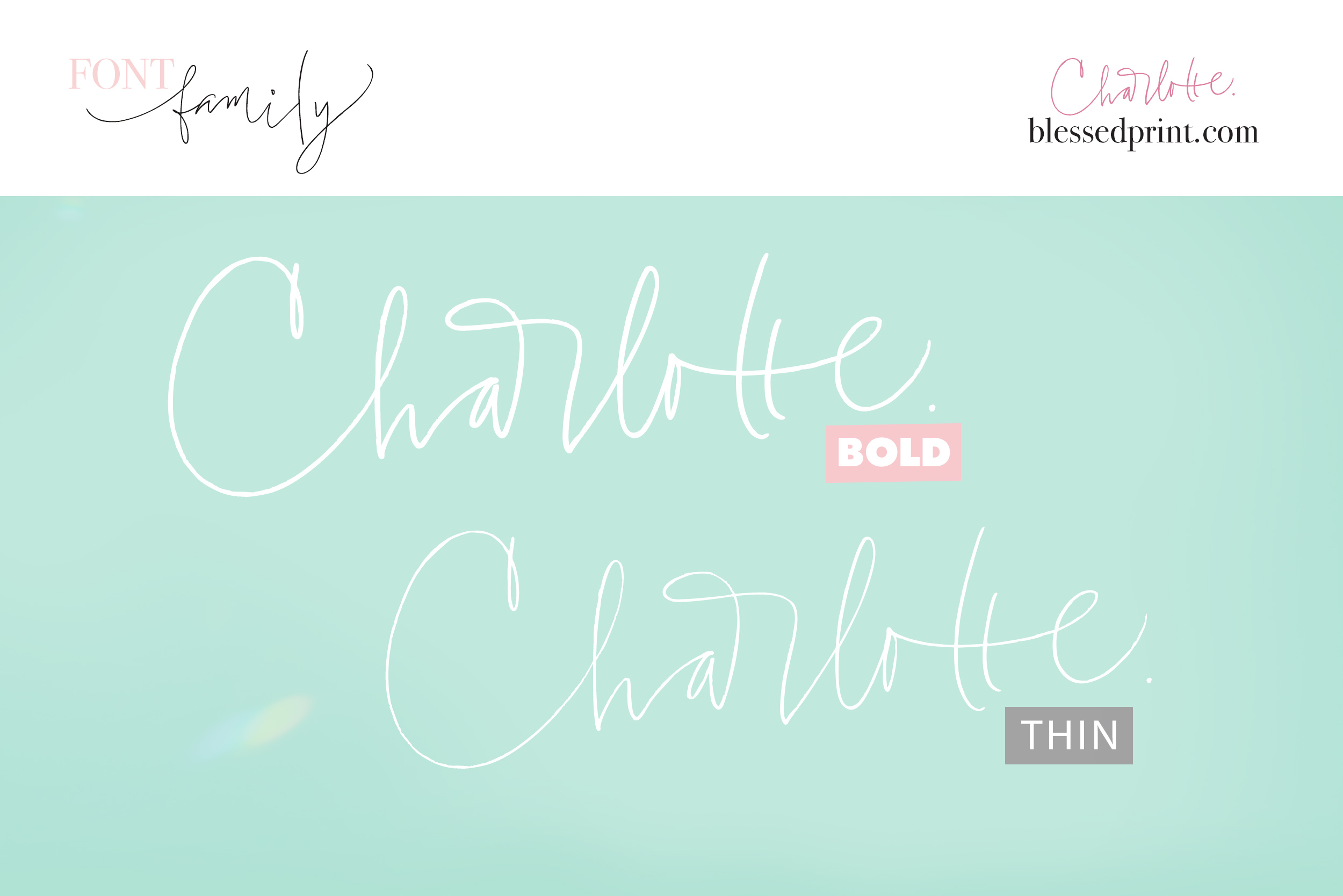 Charlotte Script with 120 ligatures example image 14