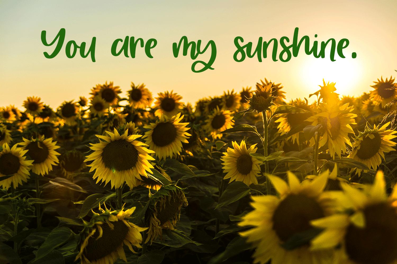 Sweet Summertime - A Hand-Written Script Font example image 3