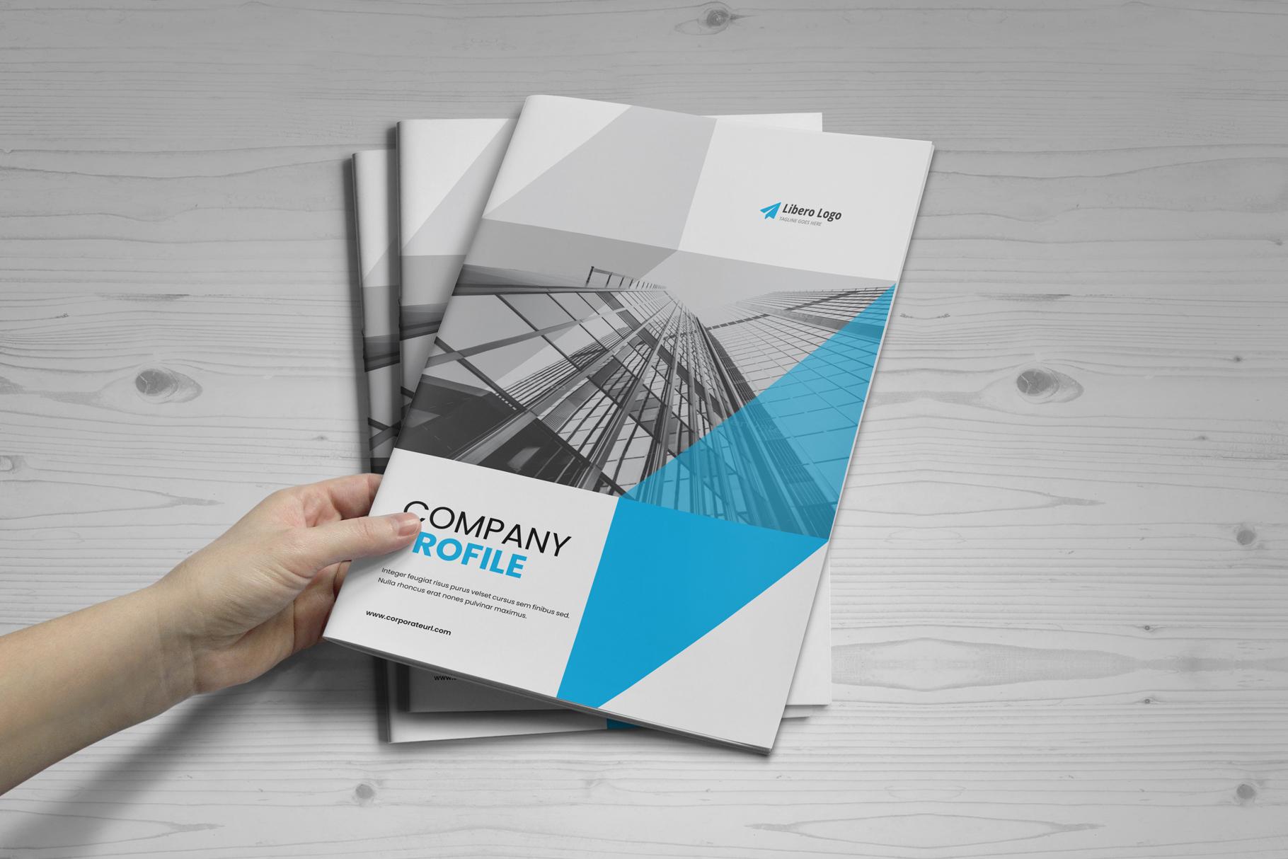 Company Profile Brochure v7 example image 12